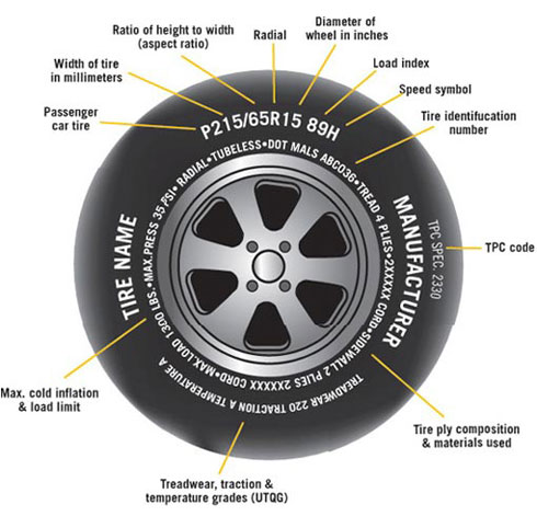 Anatomy of a Tire